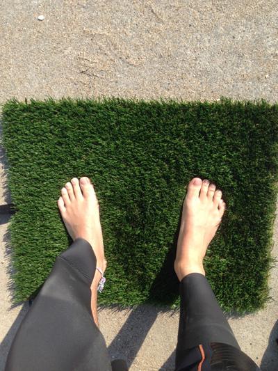 surfgrass1
